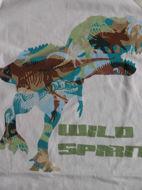 Obrázok z Set tričko dino a kraťasy 98