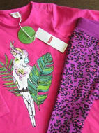 Obrázok z Súprava papagáj veľ.68